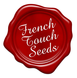french-touch-500x5006