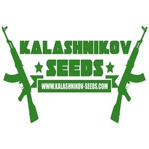 kalashnikov-seeds_download_cat_thumb_cdc6763e-d7b6-41ed-8357-11f59cdd6127_1024x10241399